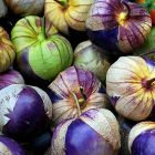 Tomatillo Purple